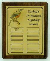 SpringRobin.jpg
